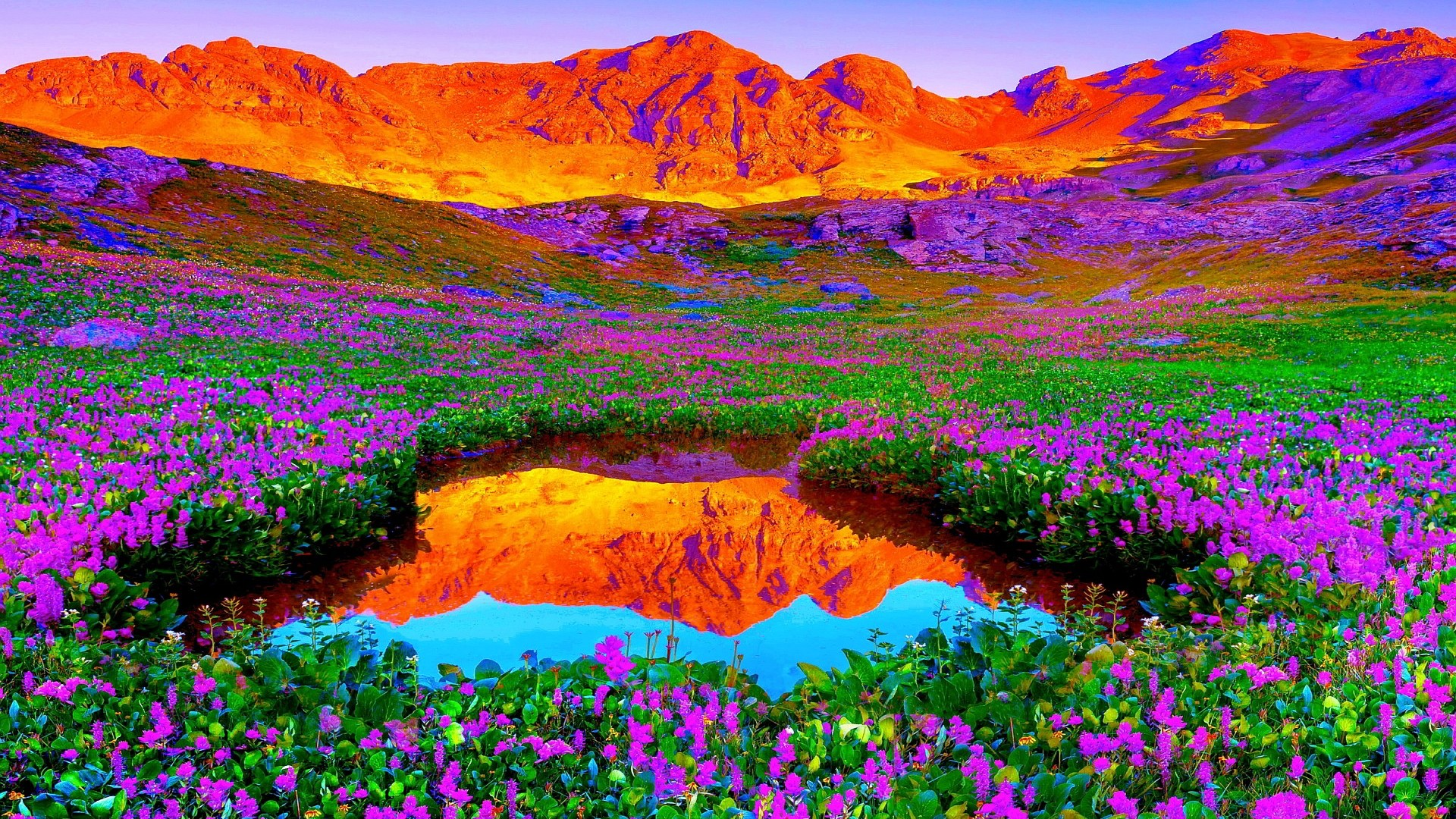 HD 1080p Nature Wallpapers Download 1920x1080
