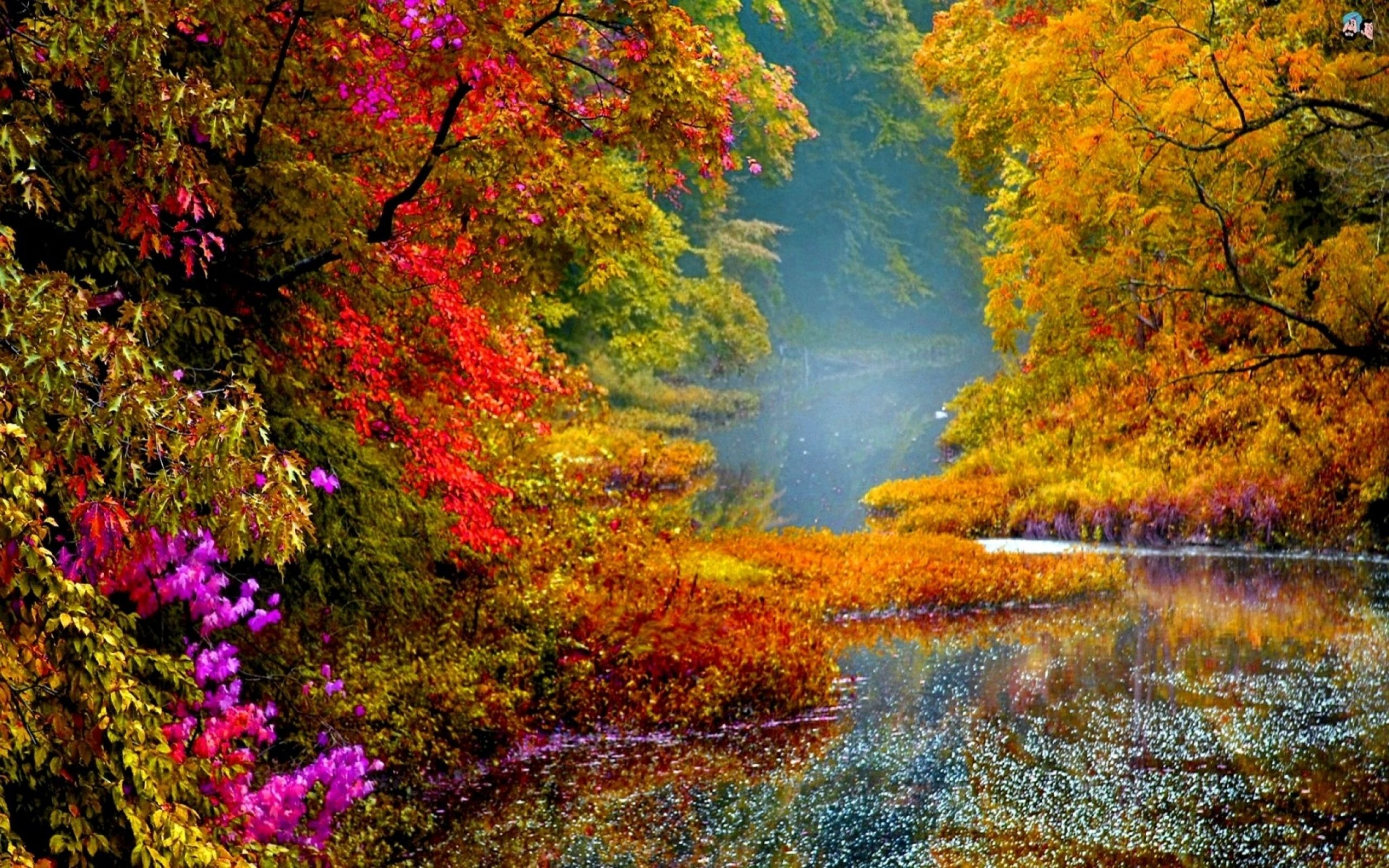 colorful scenery images   Yahoo Image Search Results Colors 2560x1600