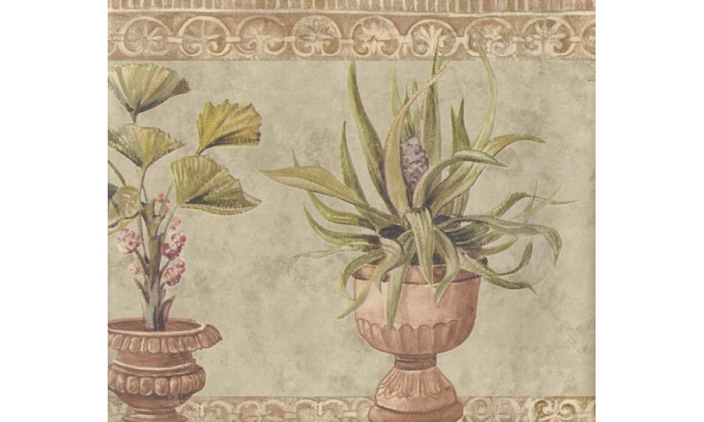 Home Brown Stone Green Plants Wallpaper Border 1000x600