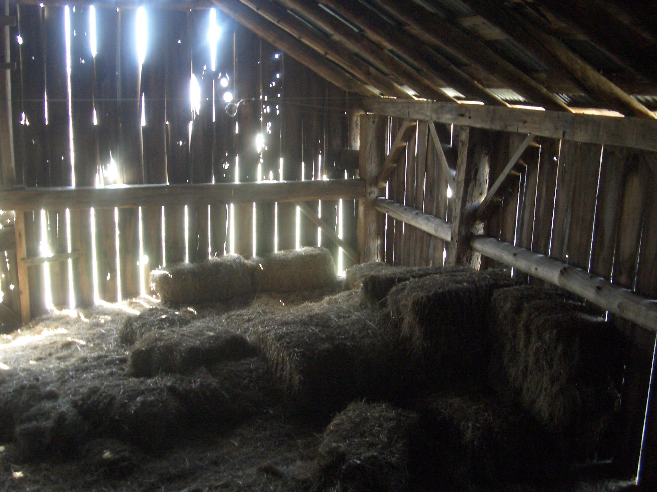 Inside an old barn 7 [image 500x375 pixels] 2304x1728