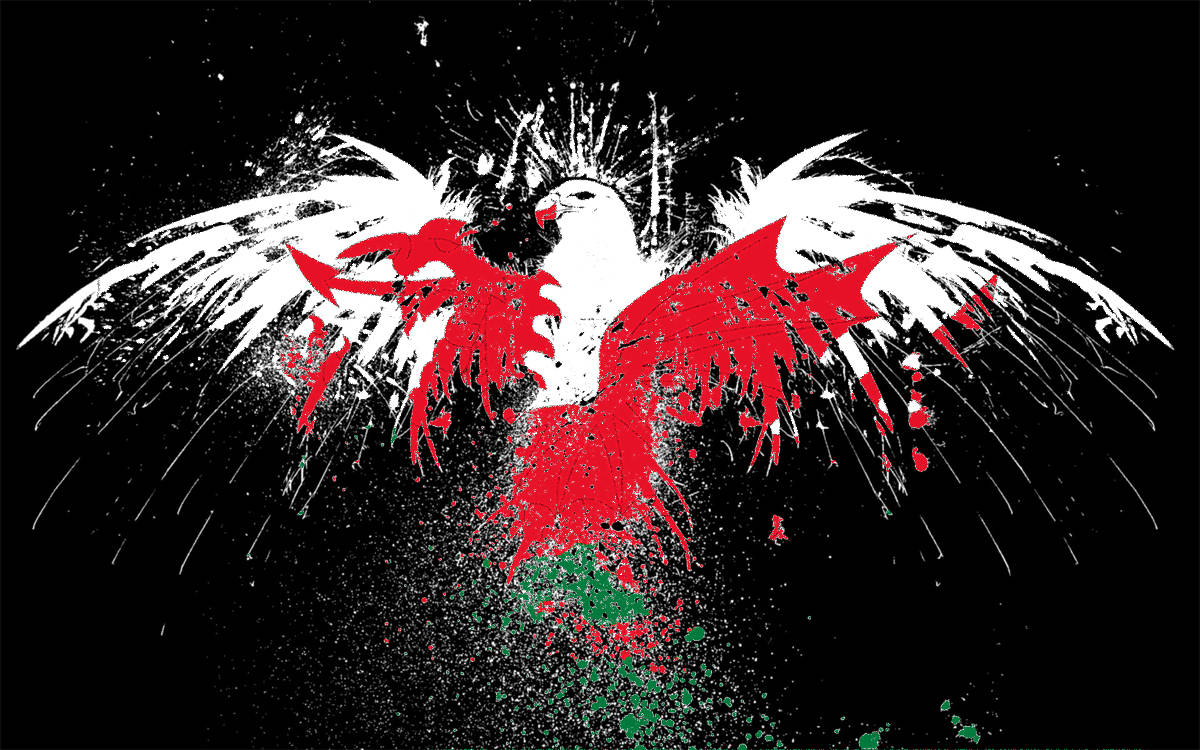 tags eagle flag wales welsh 1200x750
