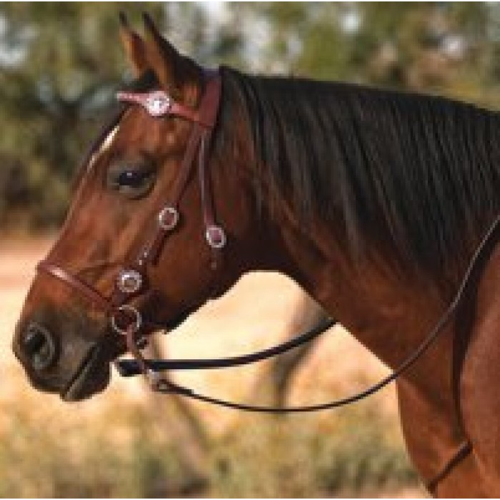 bridles bitless bridle riding western leather bitless bridle Search 700x700