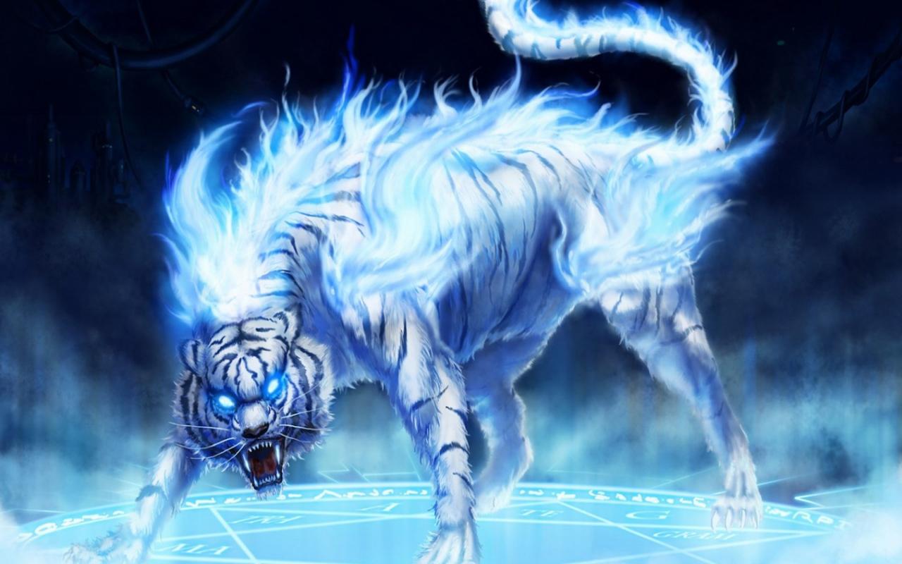 Download Lucu Gambar Kartun Binatang Lucu Wallpaper 3d Gambar Foto