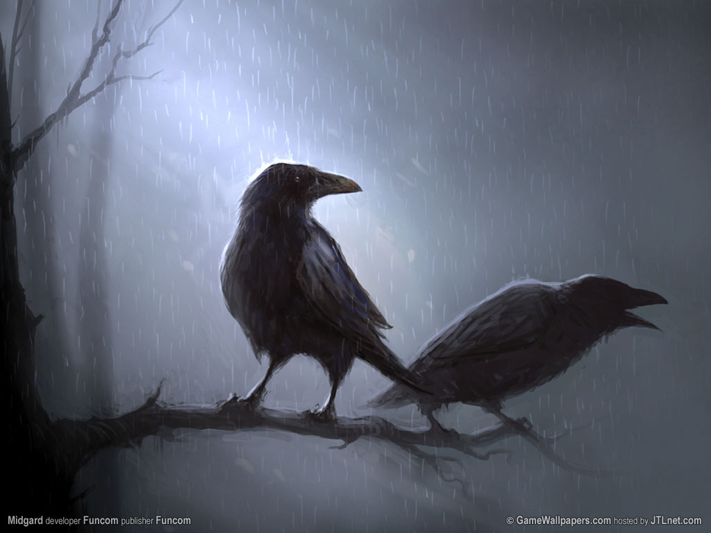 Black Raven Wallpaper Images Pictures   Becuo 1024x768