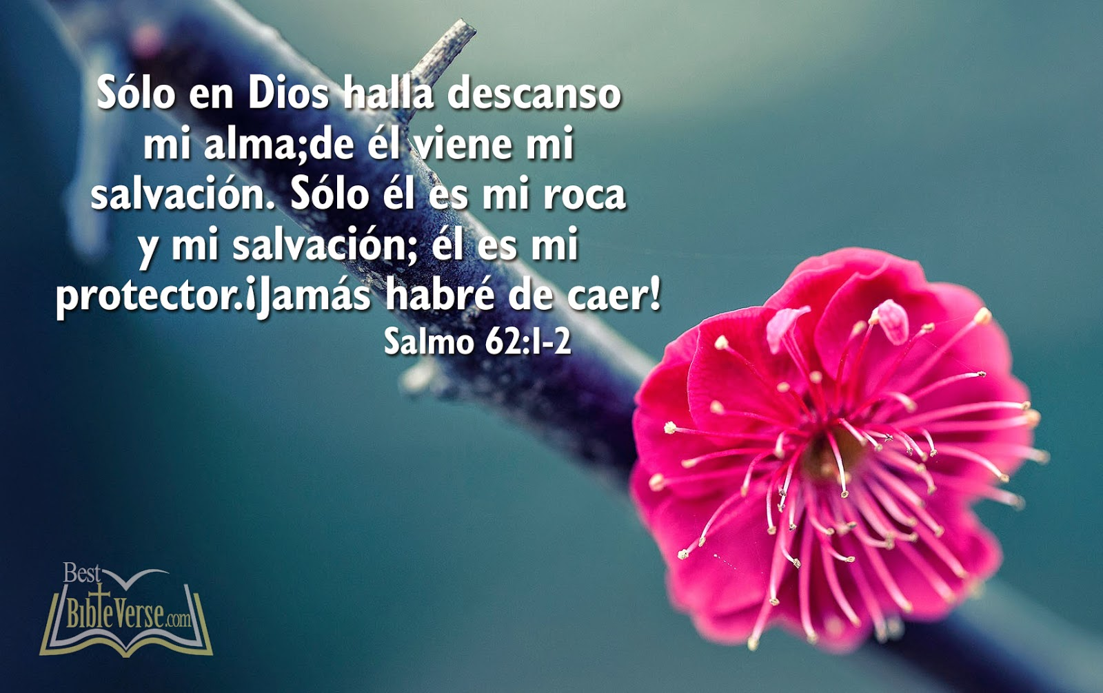 best spanish bible verse wallpapers nice spanish bible images