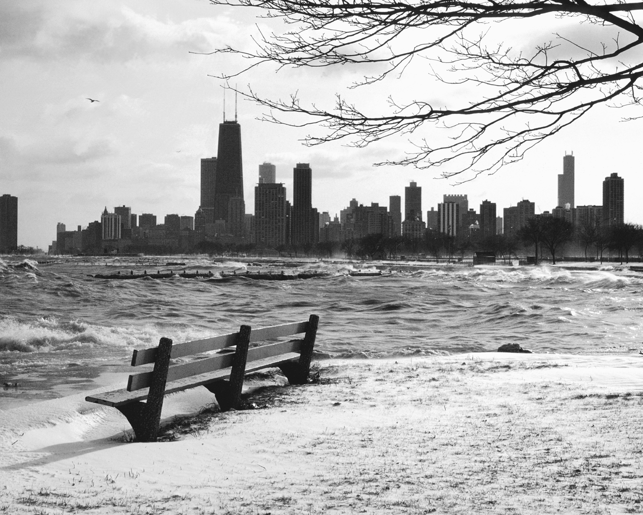 Free Download Black White Wallpaper Lonely Chicago Bench On A Cold