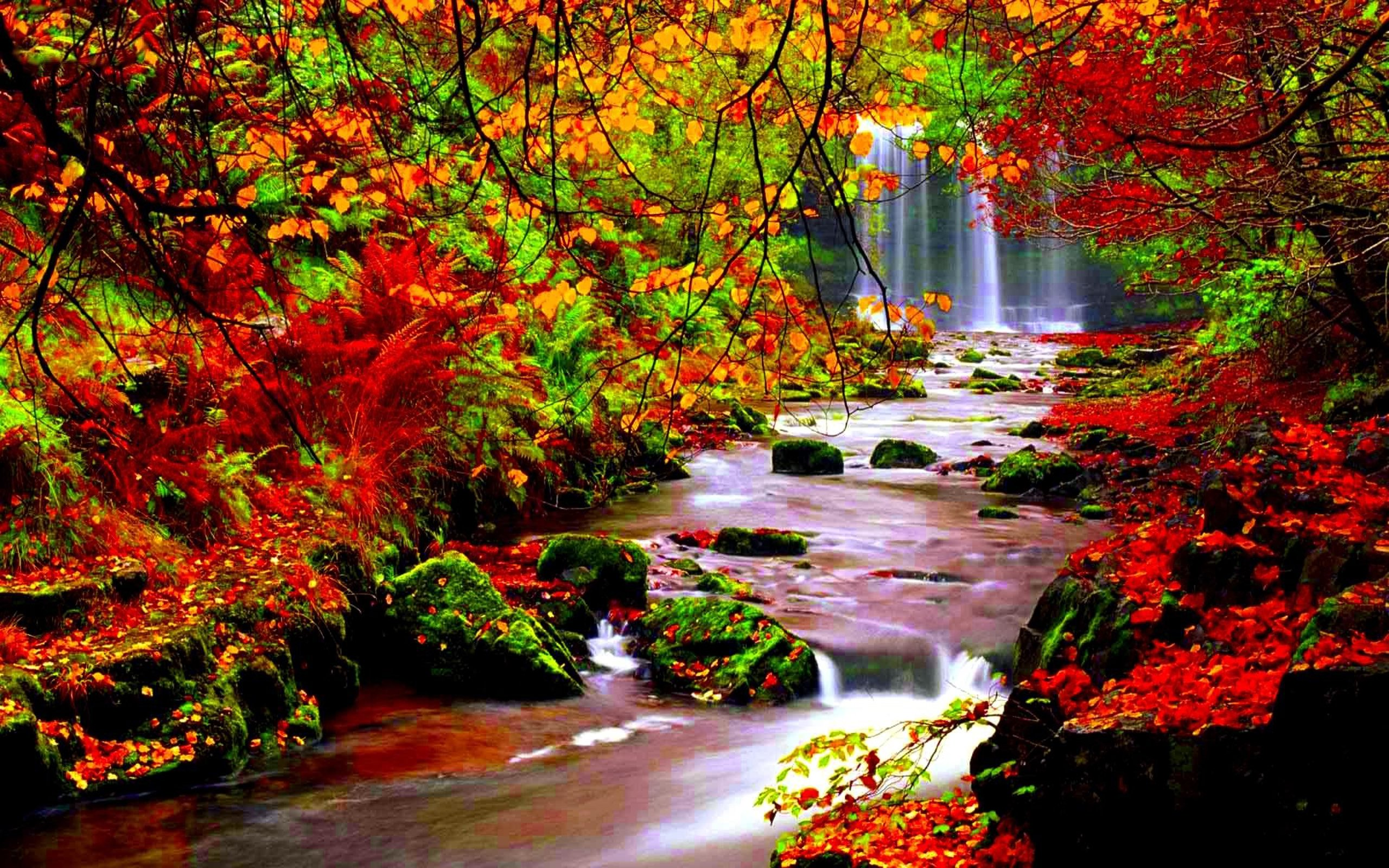 Autumn River Wallpaper Full Hd Autumn River Wallpaper   Fall 2560x1600