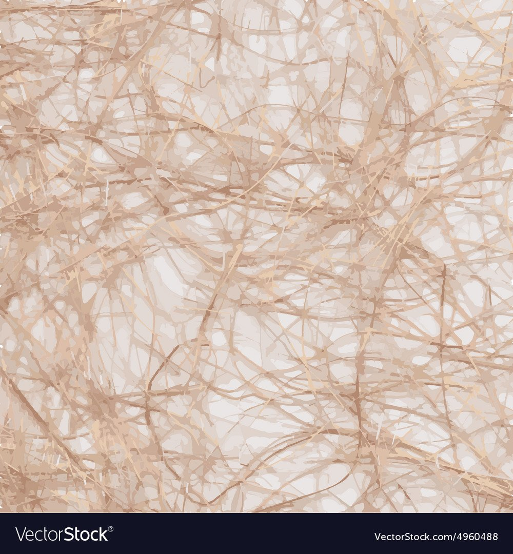 Raffia Background Royalty Vector Image   VectorStock 1000x1080