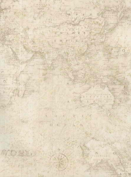 Old world wallpaper border wallpapersafari off white old world map collage wallpaper 444x600 gumiabroncs Images