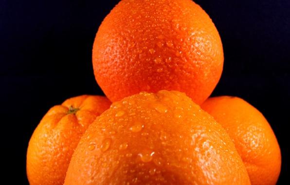 Wallpaper fruit oranges water drops pattern wallpapers food 596x380