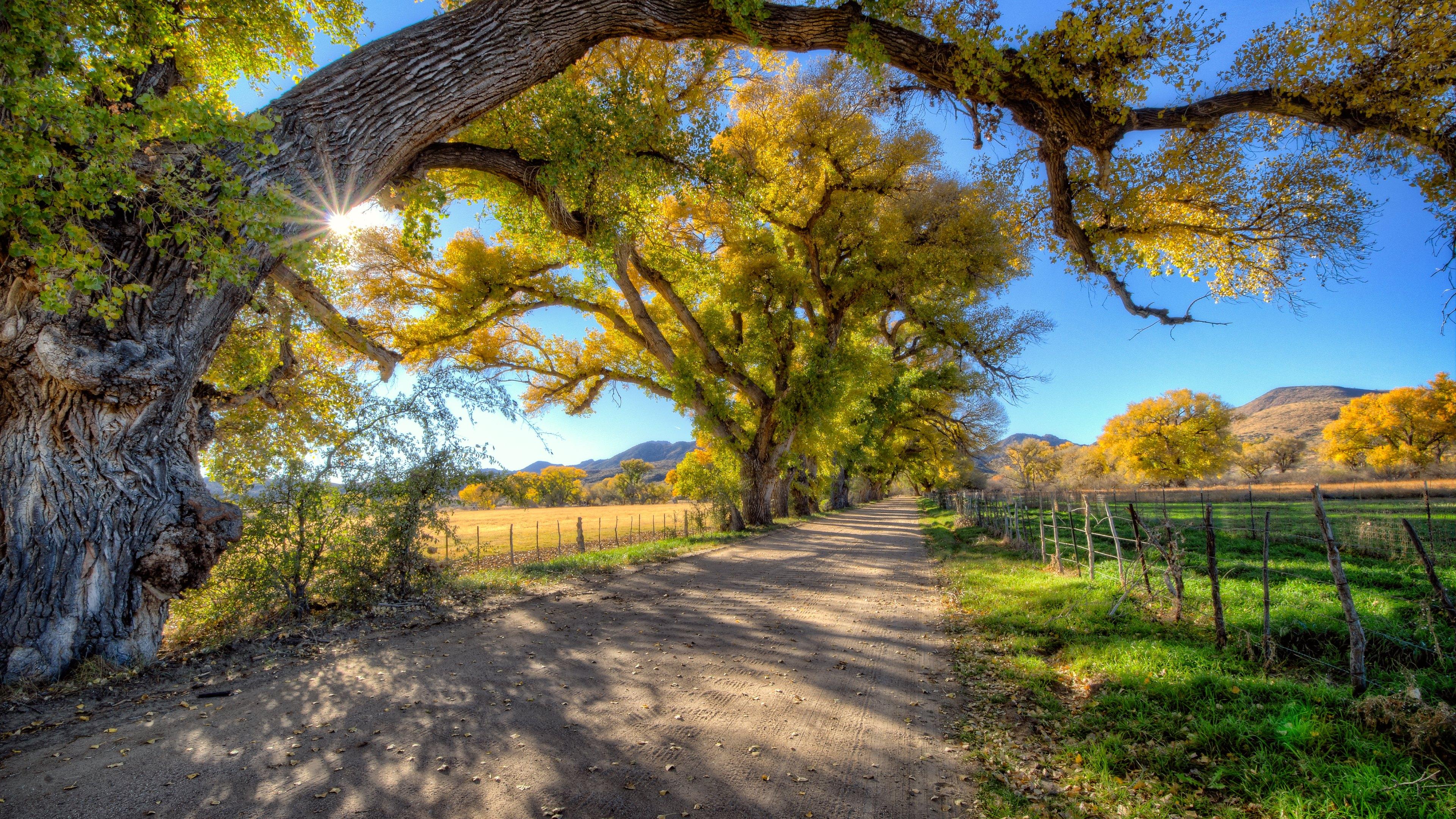 Surreal wallpaper 1080p wallpapersafari for Home wallpaper view