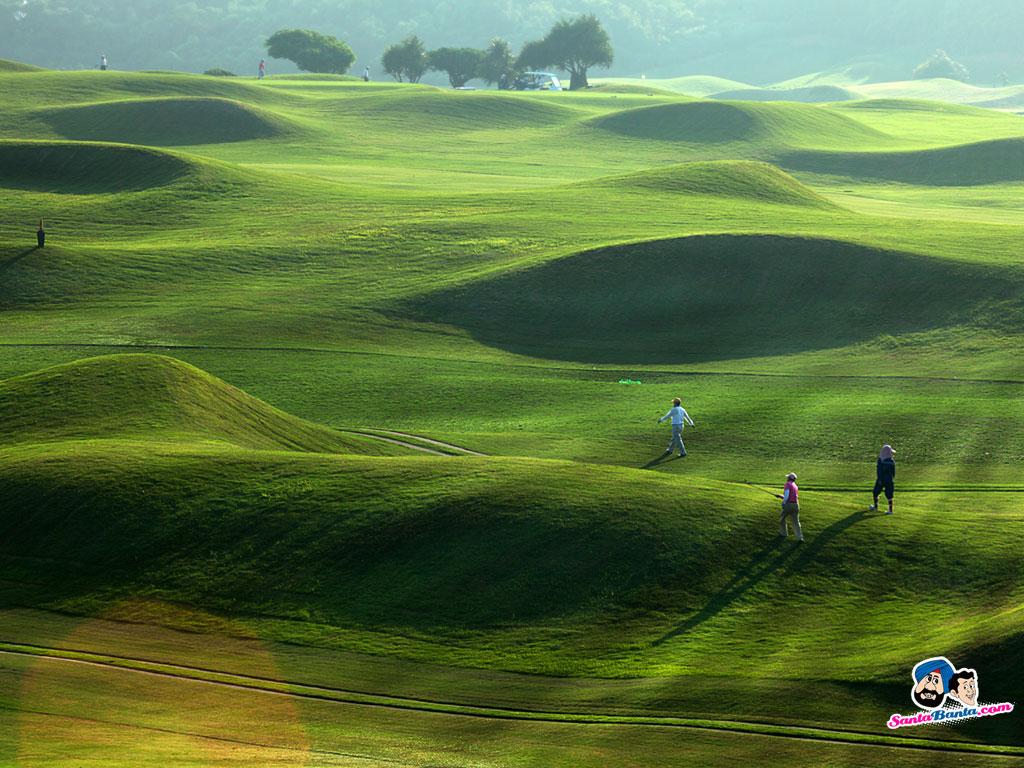 Pictures wallpaper golf course ball grass desktop sports picture 1024x768