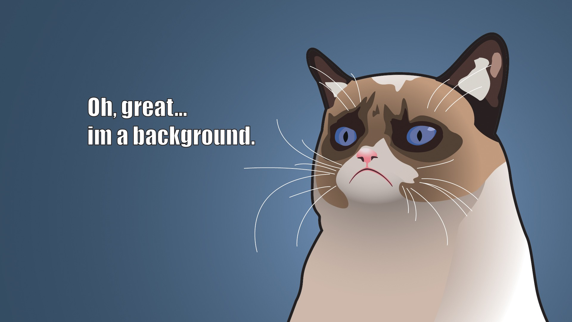 1920x1080 hilarious wallpapers for desktop grumpy cat cartoon 1920x1080