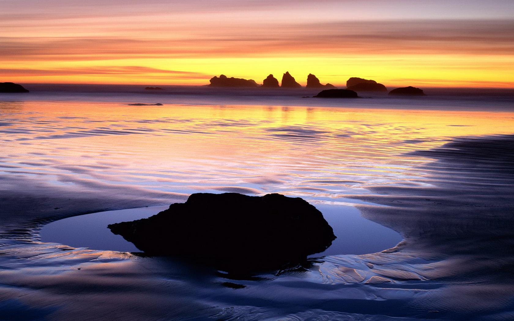 Free Oregon Coast Wall...