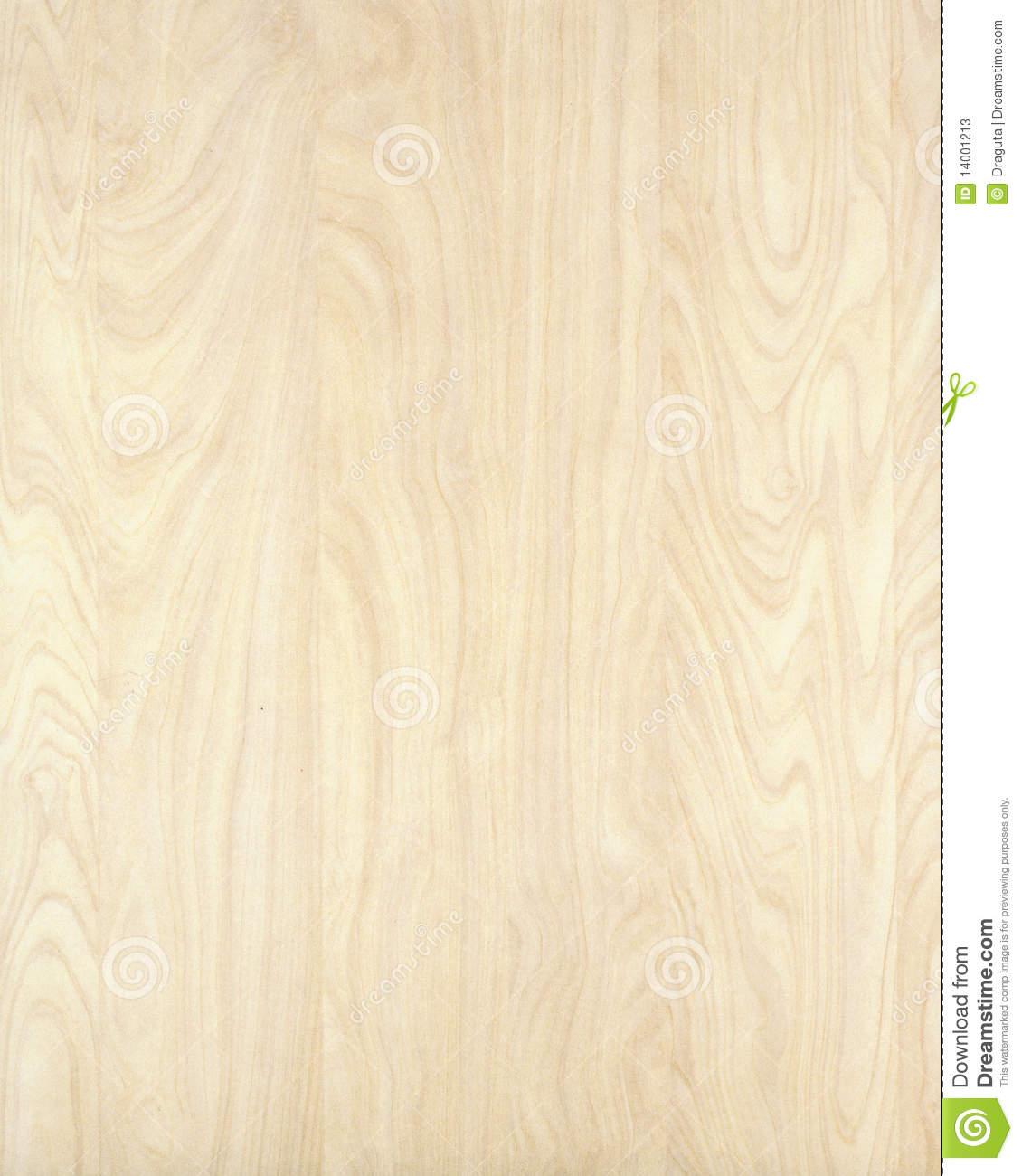 Birch Wood Wallpaper Wallpapersafari
