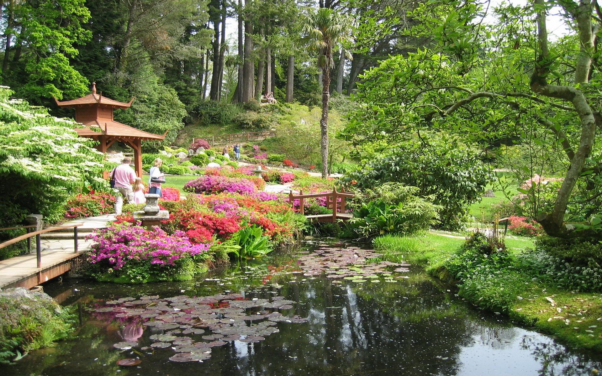 Japanese garden flowers lake garden spring beautiful art - Japanese Garden Wallpaper Hd Japanese Garde