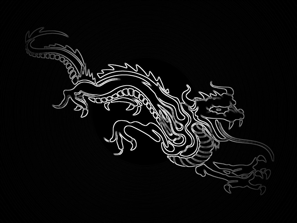 download Black background White Dragon wallpaper wallpaper 1024x768