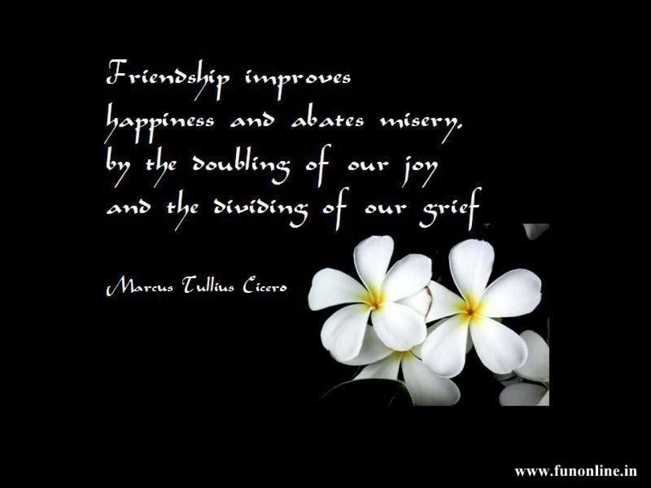 Free Download Friendship Quotes Wallpapers Friendship Quotes