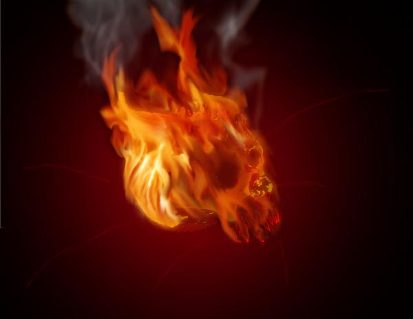 Flaming Demon Skull Wallpaper Flaming demon skull by 600x464