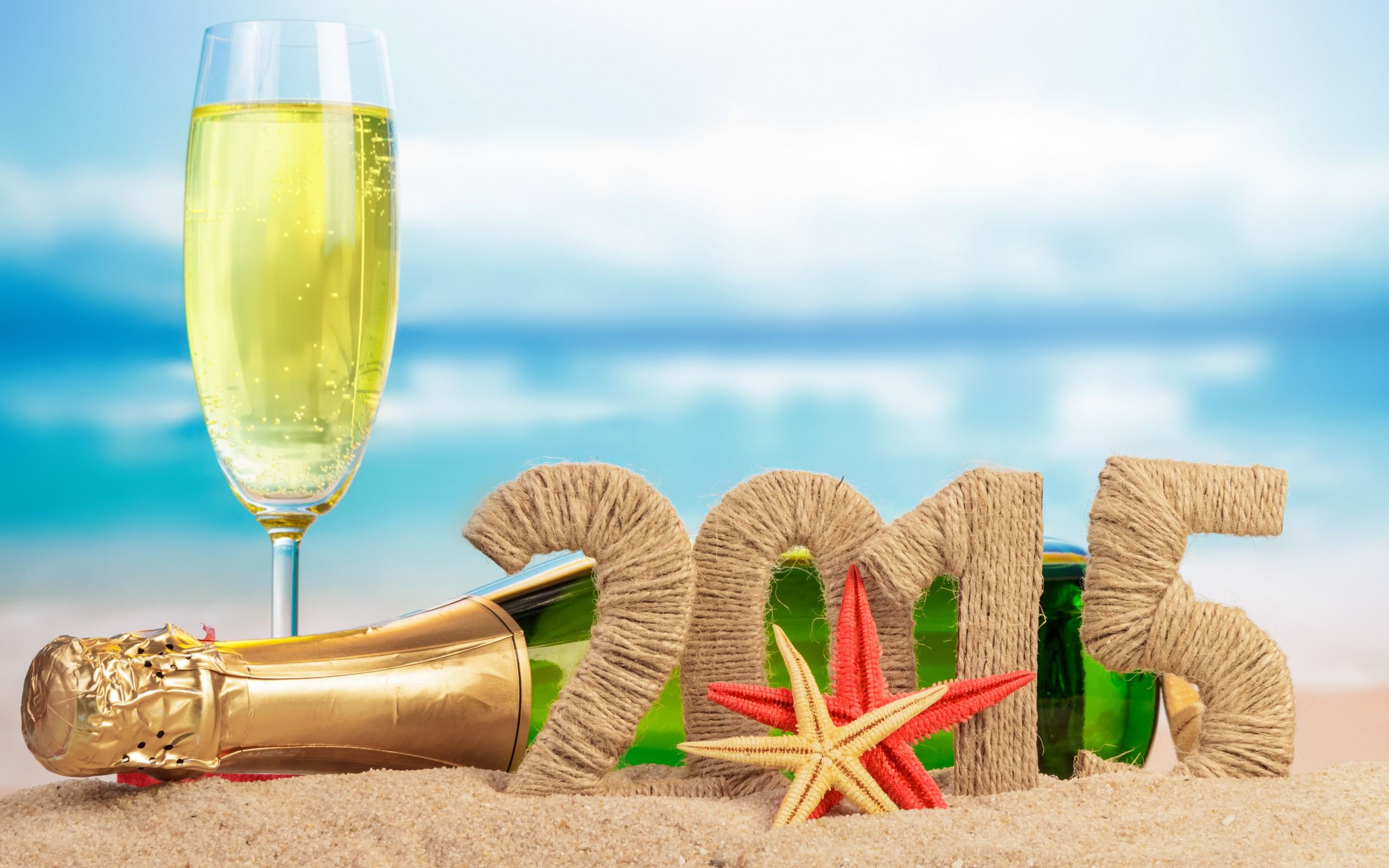Holiday   New Year 2015   Champagne   New Year   Holiday 2560x1600