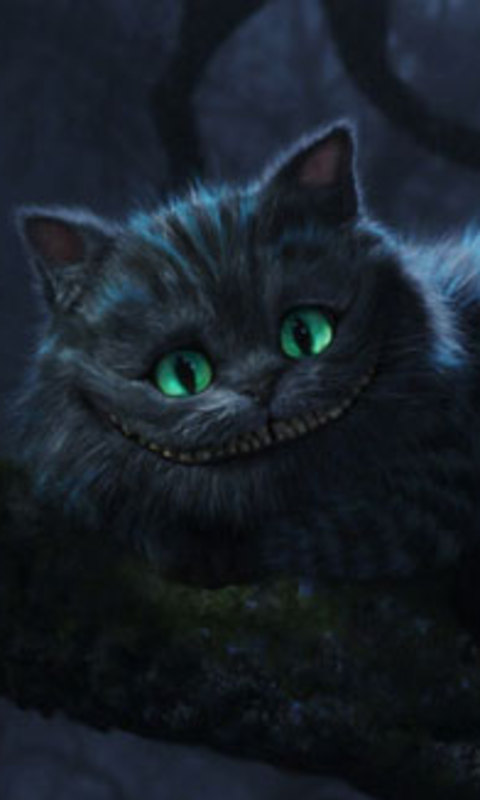 Cheshire Cat Wallpapers Fan 480x800