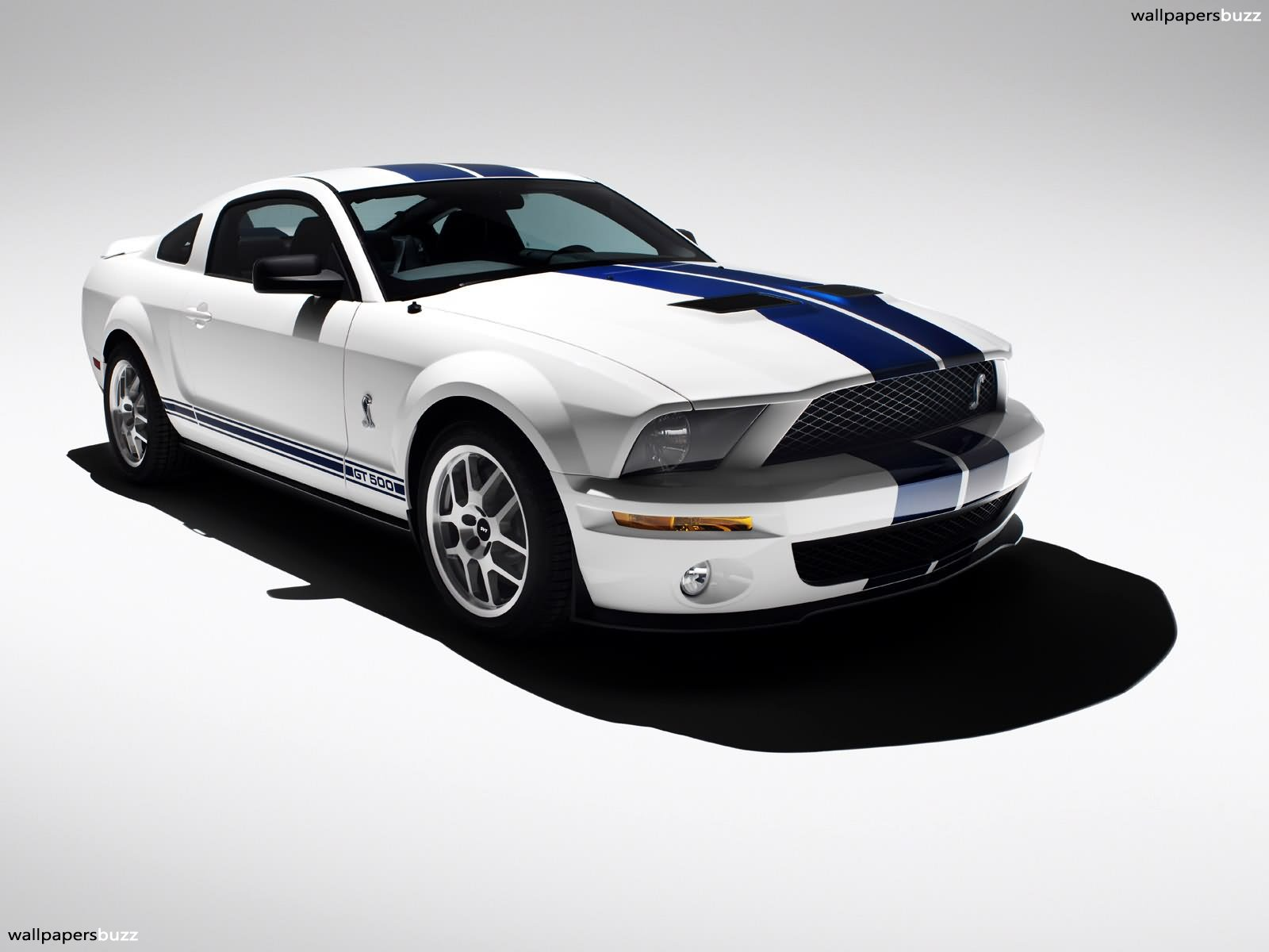 Wallpapers Ford Mustang Shelby GT500 1600x1200
