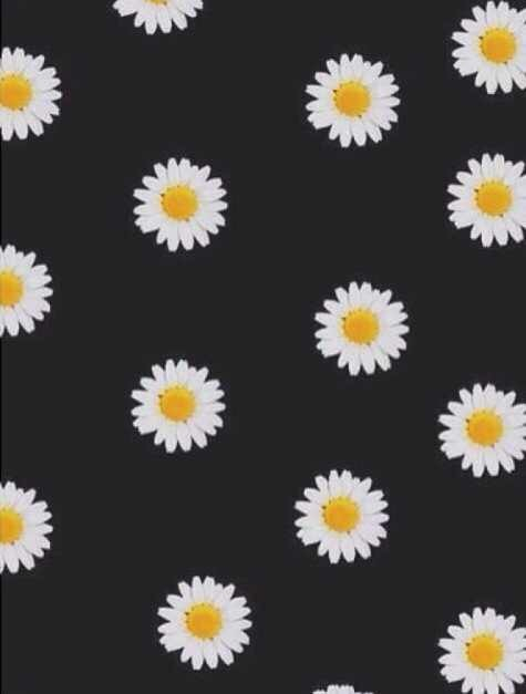 daisy flowers background Tumblr 475x627