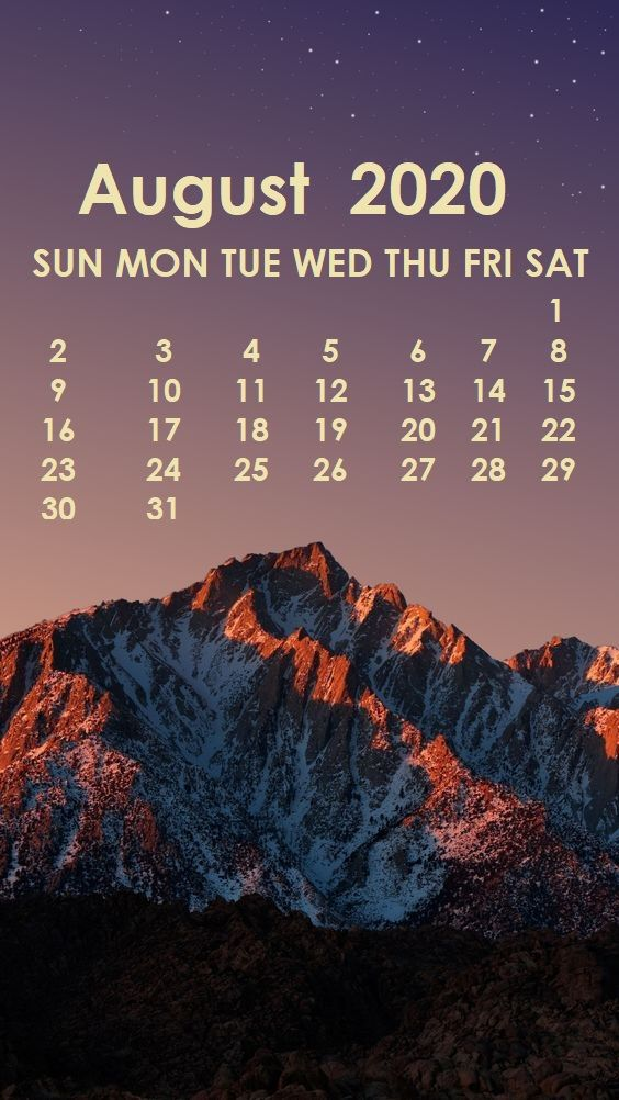 August 2020 iPhone Wallpaper in 2019 Calendar wallpaper Iphone 564x1002