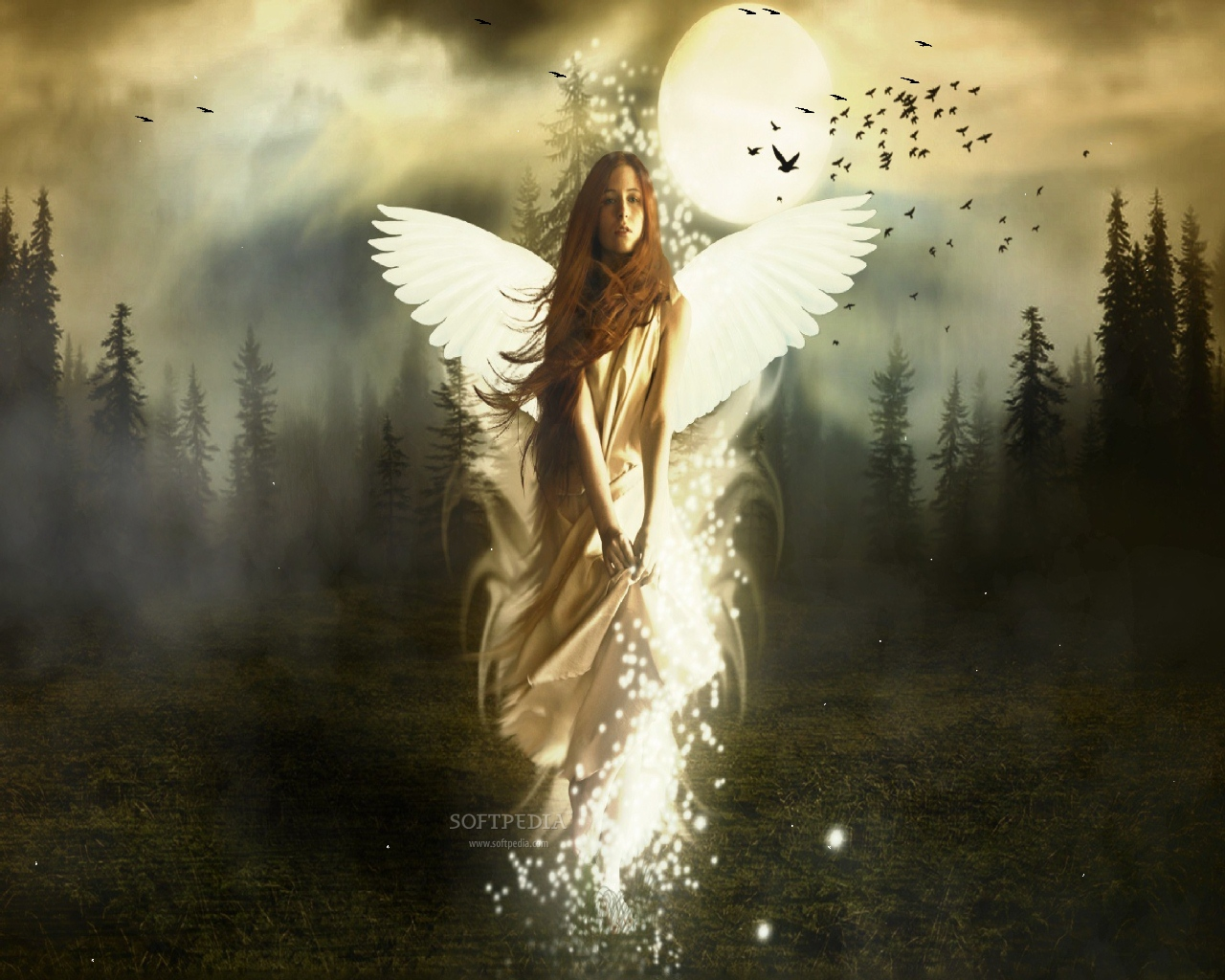 Angel Screensaver   This is a sample from what Beautiful Angel 1280x1024