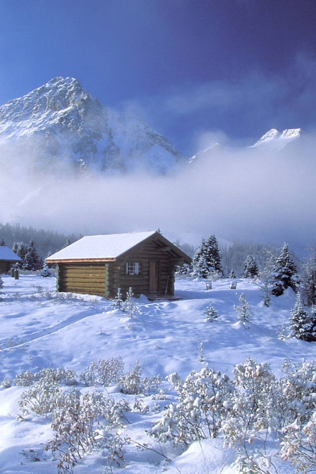 related pictures cabin eve snowy cold trees village house art snow Car 640x960