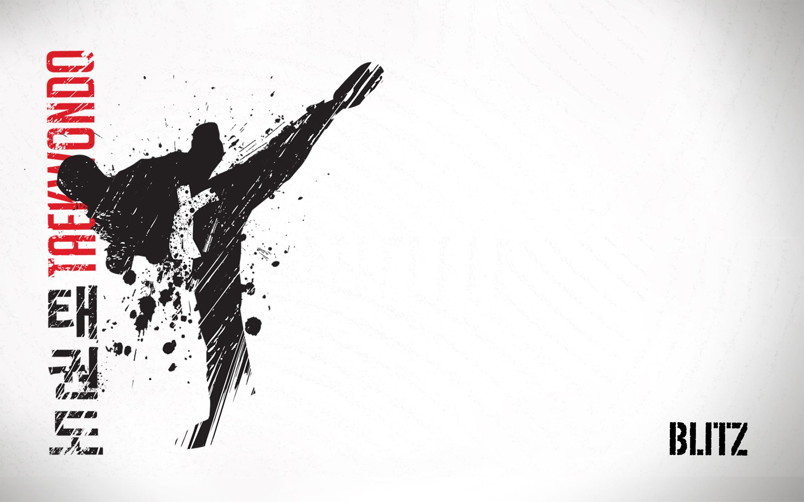Blitz Sport Taekwondo Wallpaper 2560x1600jpg 2560x1600