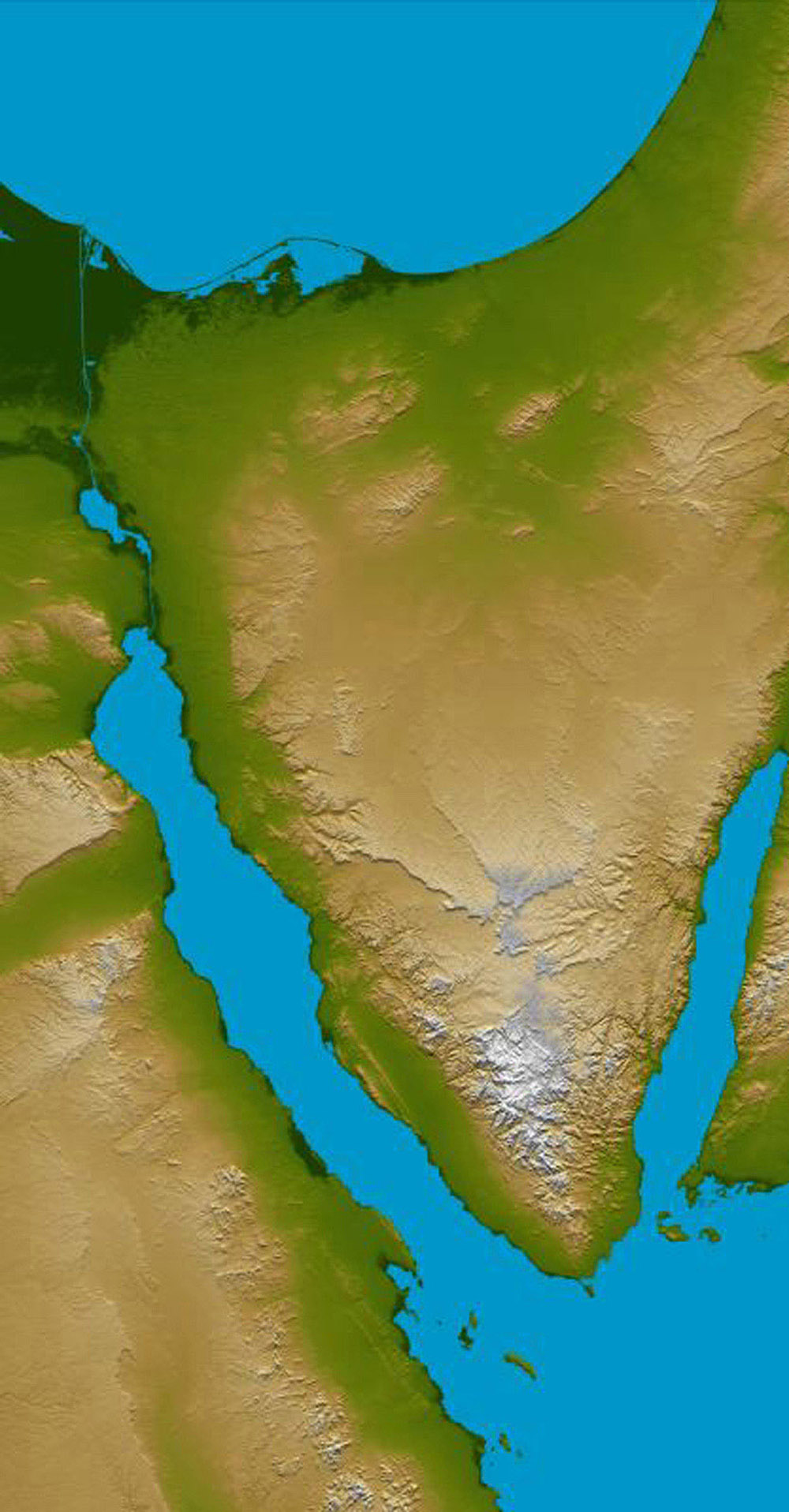 Space Images Sinai Peninsula Shaded Relief and Colored Height 1000x1916