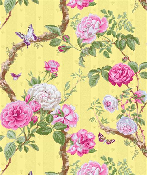 CH181658 Chatsworth Wallpaper Book by Imperial TotalWallcovering 480x572