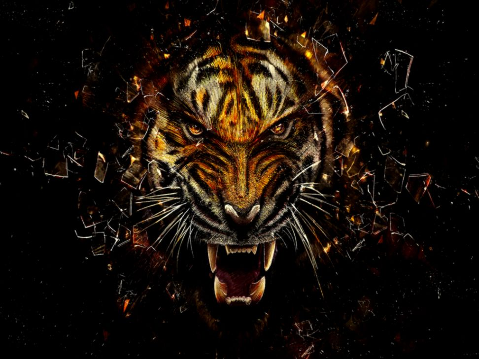 download Face Tiger Art Cool Wallpapers Hd Background 972x729