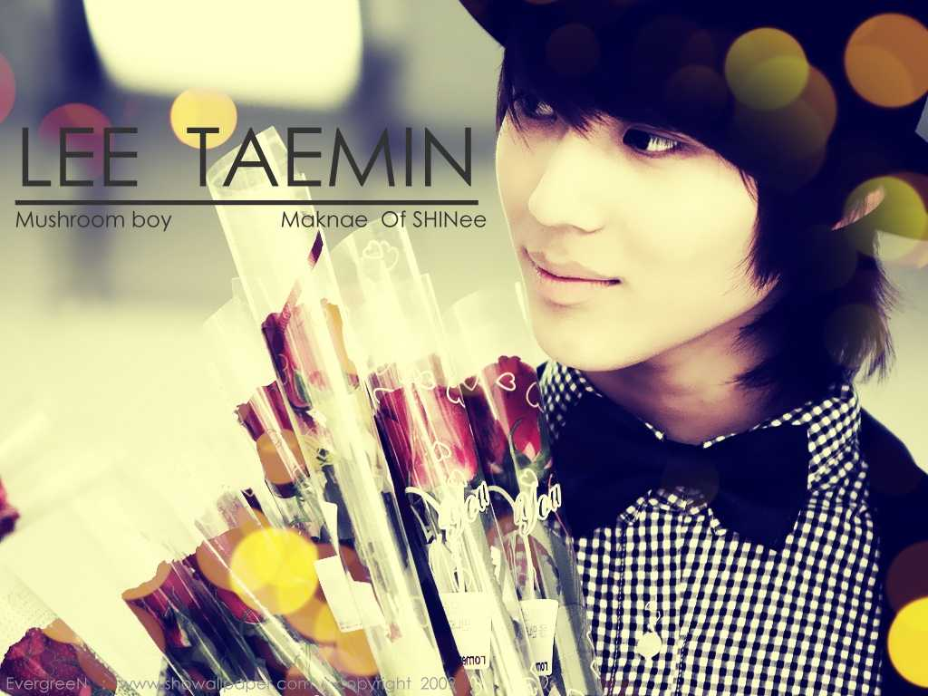 Taemin Wallpaper   Lee Taemin Wallpaper 33585745 1024x768