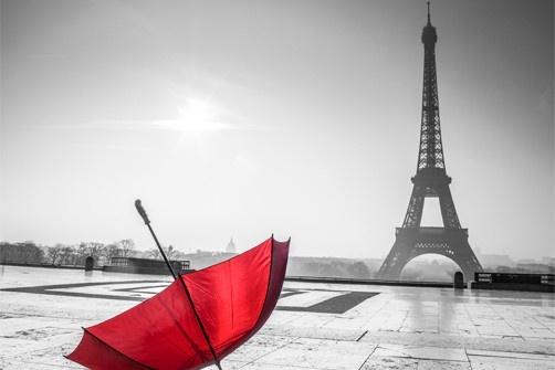 Black and white paris wallpaper wallpapersafari for Eiffel tower wall mural black and white