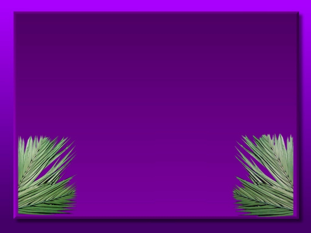 Resources For Palm Sunday 1024x768