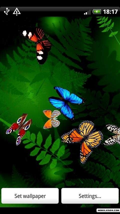 Butterfly Live Wallpaper Android App download   Download the 480x854
