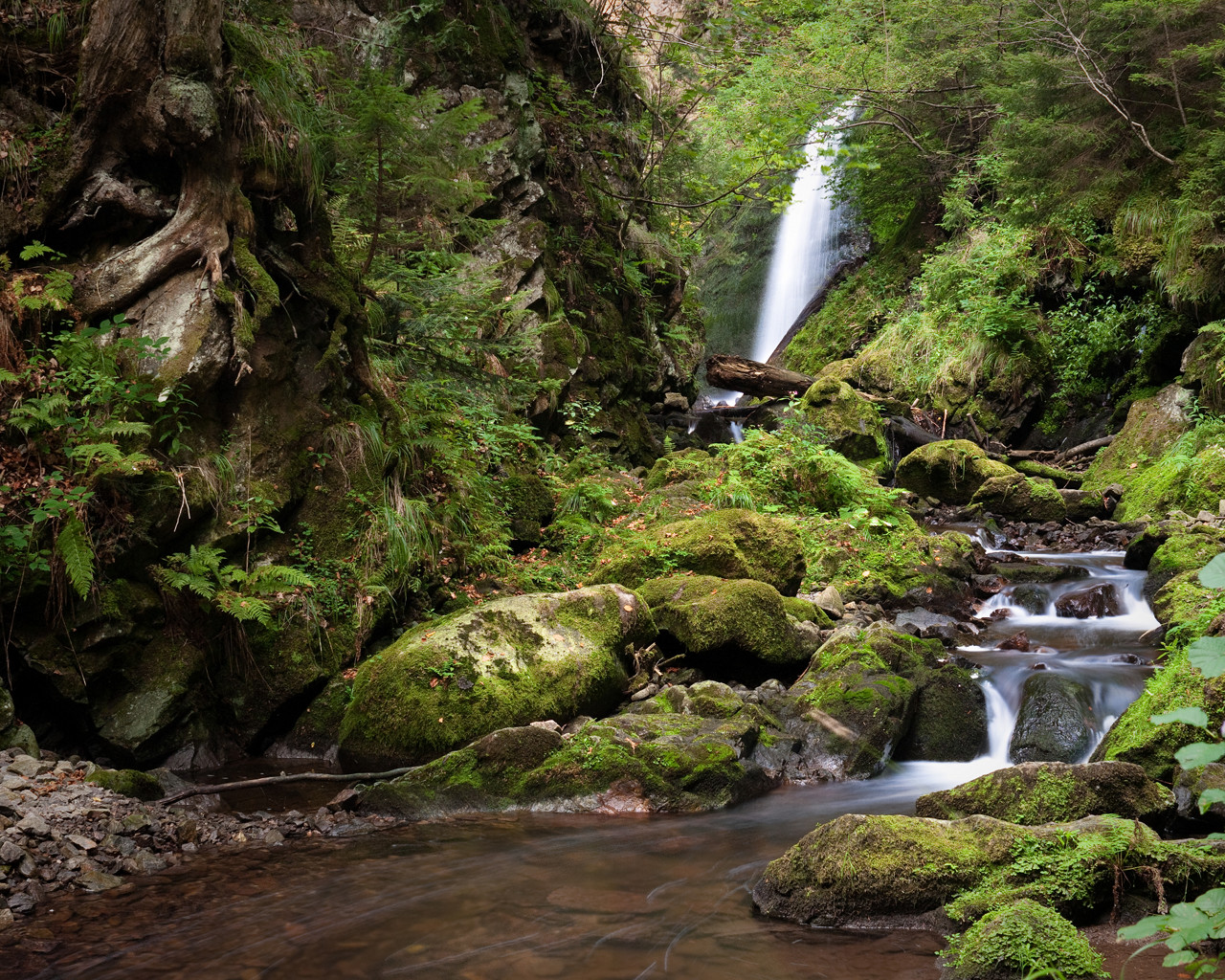 Jungle Waterfall Wallpaper Hd: Jungle Desktop Wallpaper