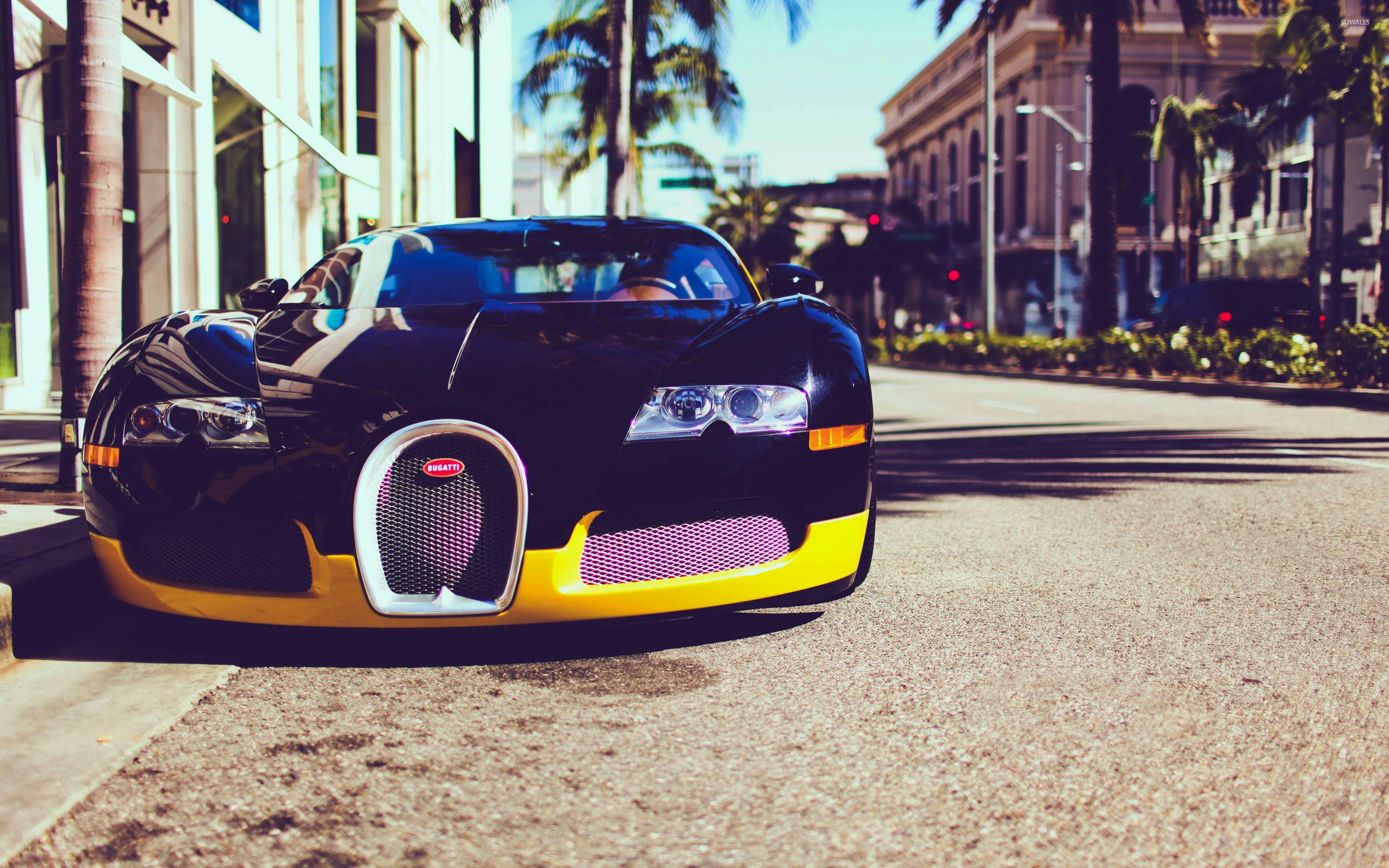 Bugatti Veyron EB 164 [3] wallpaper   Car wallpapers   16102 2880x1800