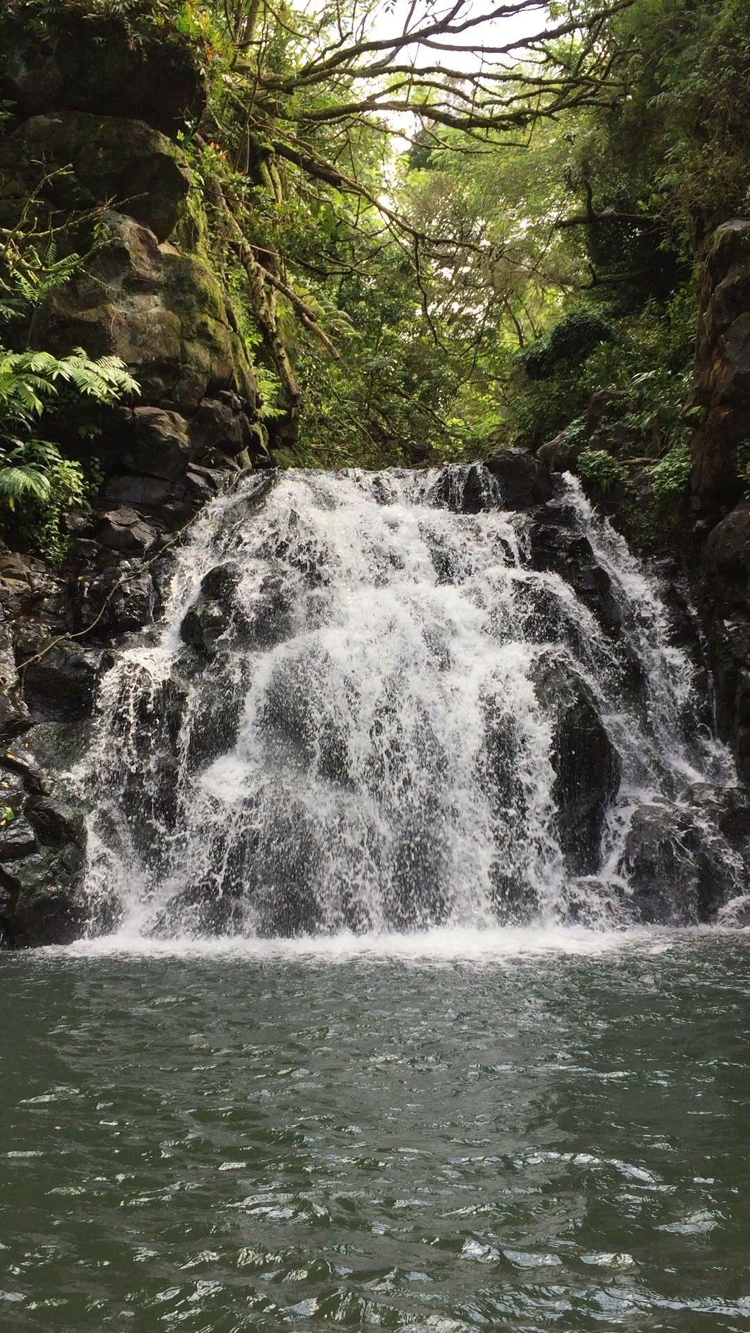 Ice pond in Kalihi valley Oahu Hawaii Waterfalls Waterfall 1080x1920