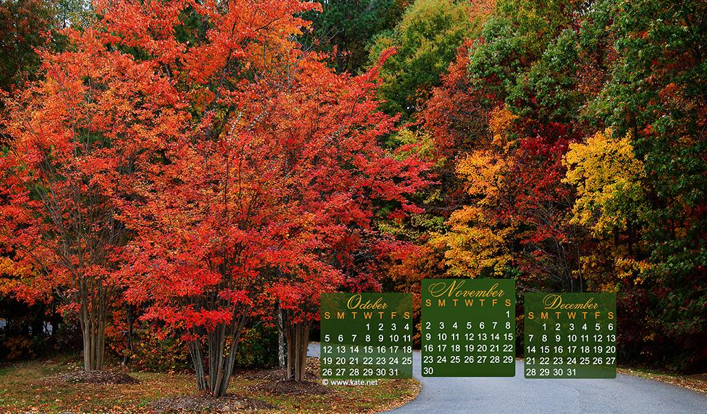November 2014 Calendar Wallpaper 1024x600