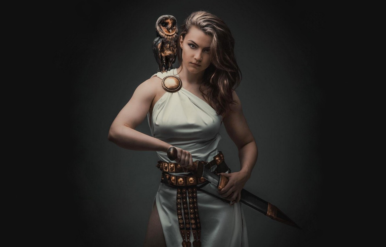 Wallpaper Owl Sword Warrior Fighter Gladius Minerva Svetlana 1332x850