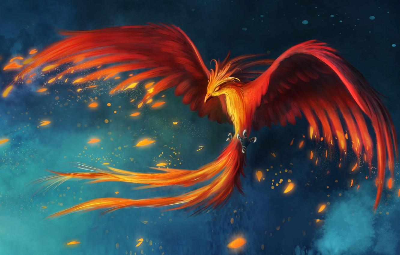 Wallpaper flight bird figure feathers art Phoenix images for 1332x850