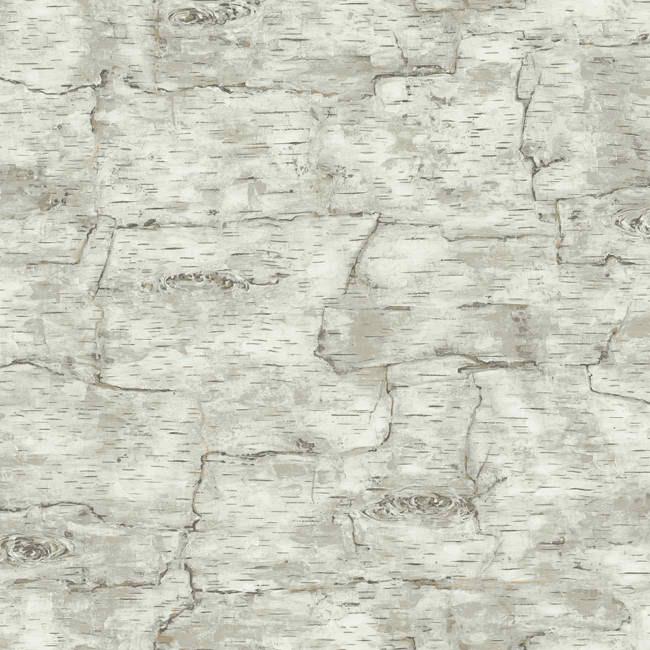 Grey LM7987 Birch Bark Wallpaper   Lodge Outdoors Wallpaper 650x650