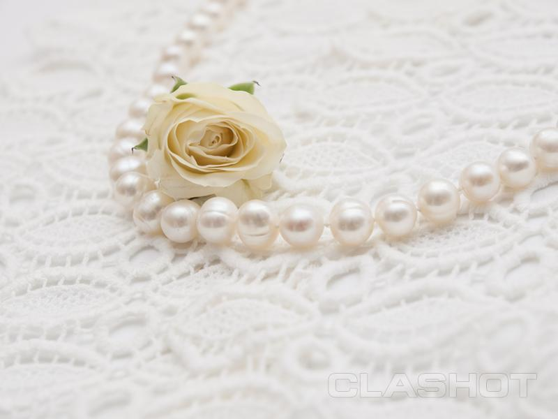 Pearl Background Vintage White Pearl Necklace And White Rose on White 800x600