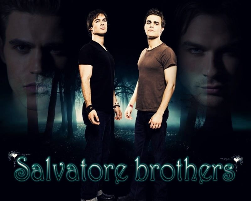 Damon and Stefan Salvatore images Damon and Stefan wallpaper photos 800x640