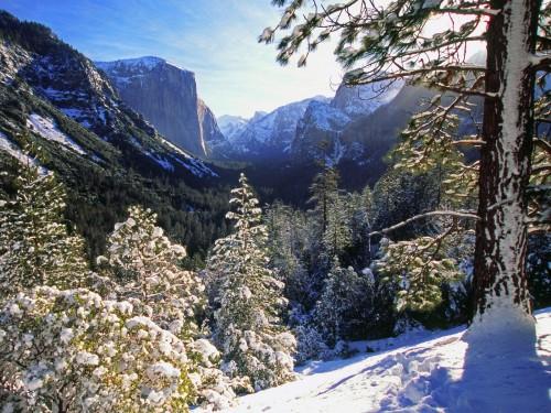 Yosemite Winter Screensaver Screensavers   Download Yosemite 500x375