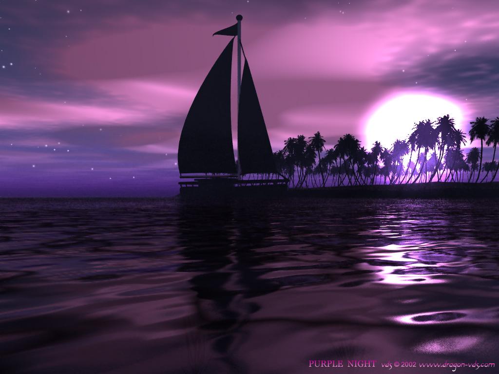 Purple Wallpaper   Purple Wallpaper 558780 1024x768