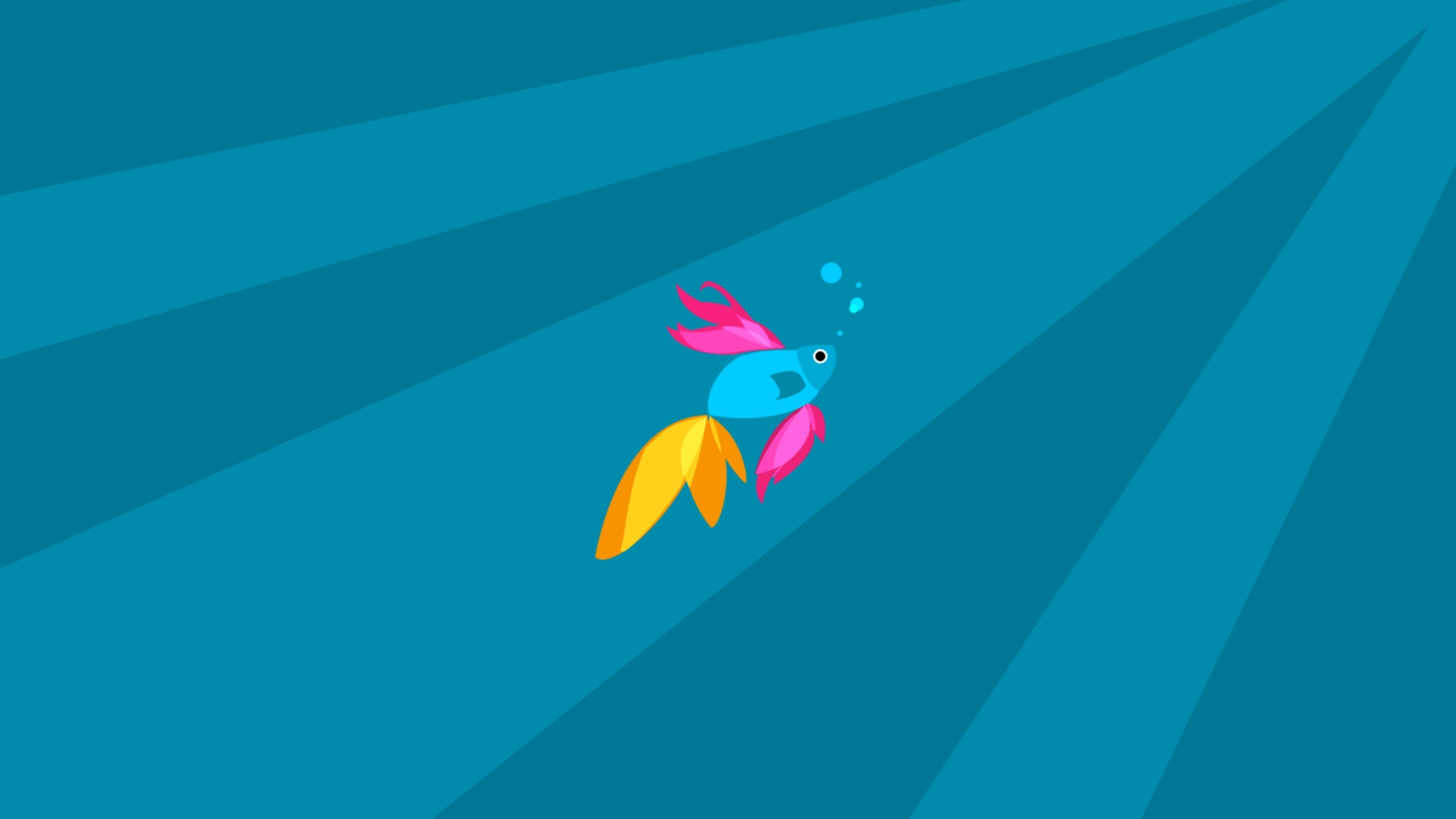 Beta Fish   HQ Wallpapers download 100 high quality wallpapers 2560x1440